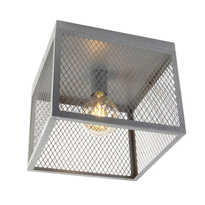 Rūpnieciskā-griestu-lampa-antīks-sudrabs---Cage-Robusto